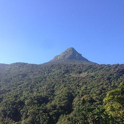 The view of the Adam's Peak in Sri Lanka