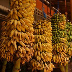 Bananes Sri Lanka