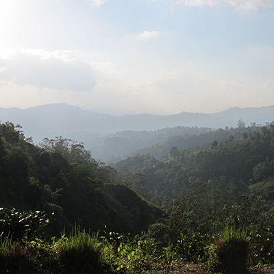 Knuckles Mountain Range in Sri Lanka