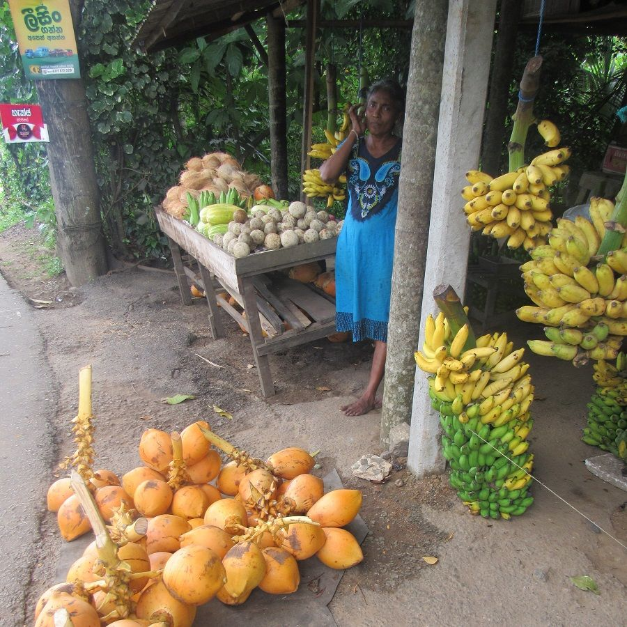 fruits and vegetables, tropical fruits, sri lanka, unawatuna