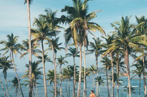 mirissa-beach