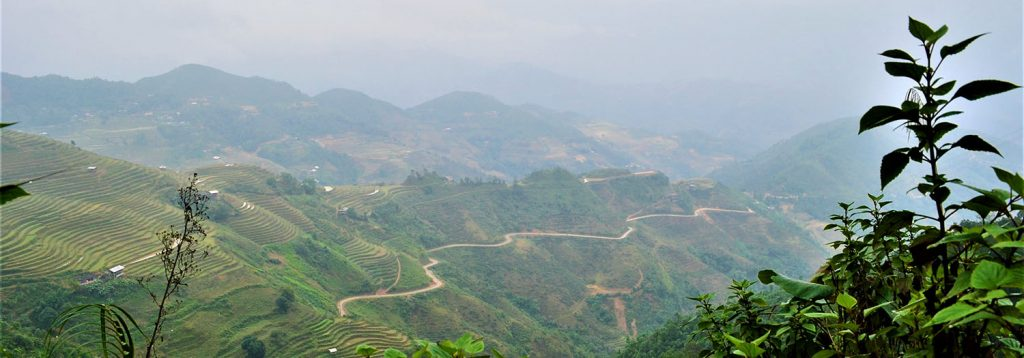 Vietnam, Ha Giang, Rizières