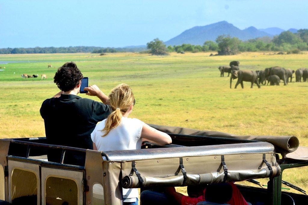 Safari Sri Lanka Minneriya National Park